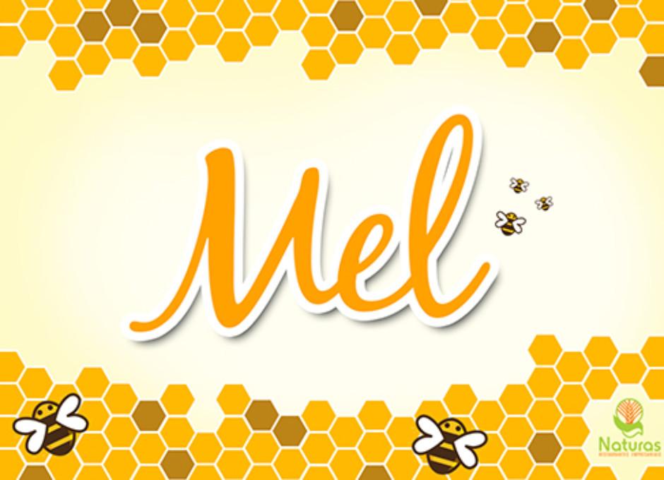 Conheça os Benefícios do Mel